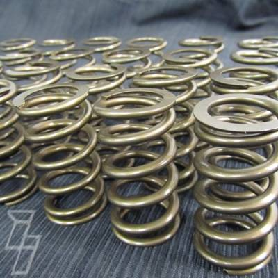 Industrial Injection  - Industrial Injection 110 LBS Single Valve Spring Set